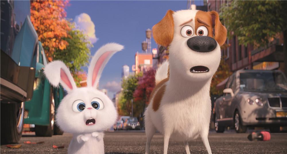 可爱兔子萌图电影